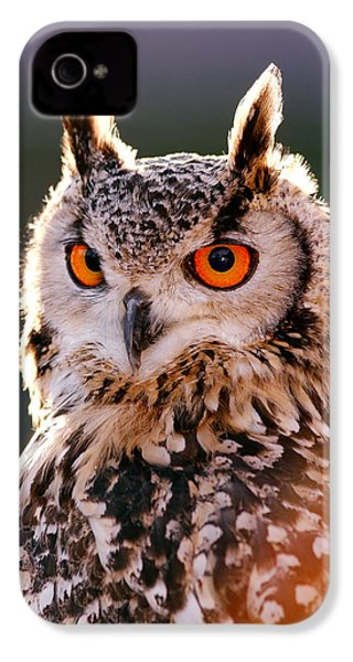 Backlit Eagle Owl IPhone 4s Case by Roeselien Raimond