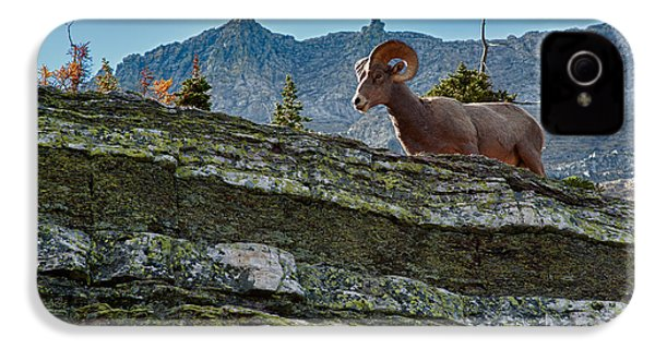Bighorn IPhone 4s Case by Sebastian Musial