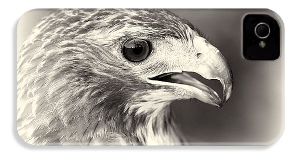 Bird Of Prey IPhone 4s Case by Dan Sproul