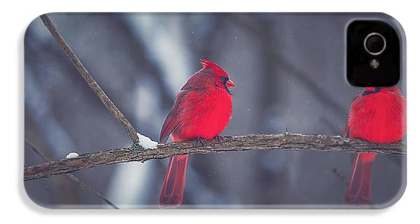 Birds Of A Feather IPhone 4s Case by Carrie Ann Grippo-Pike