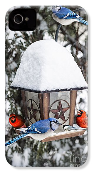 Birds On Bird Feeder In Winter IPhone 4s Case by Elena Elisseeva