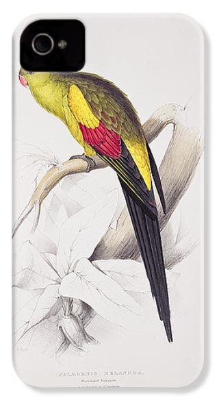 Black Tailed Parakeet IPhone 4s Case by Edward Lear