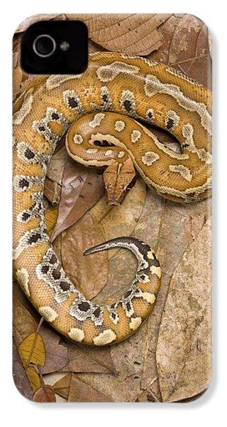 Blood Python IPhone 4s Case