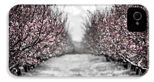 Blooming Peach Orchard IPhone 4s Case by Elena Elisseeva