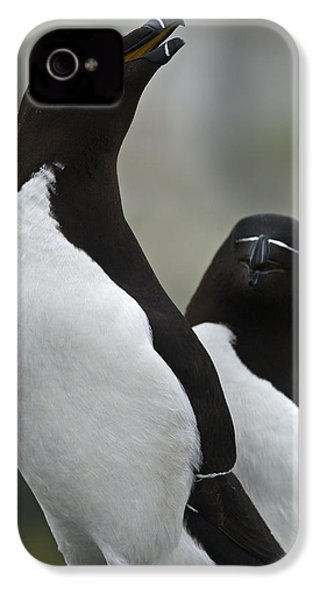 Bonded For Life... IPhone 4s Case by Nina Stavlund