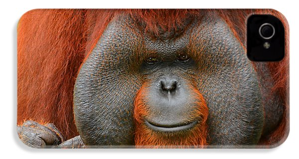 Bornean Orangutan IPhone 4s Case by Lourry Legarde
