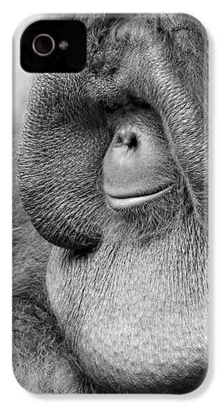 Bornean Orangutan V IPhone 4s Case by Lourry Legarde