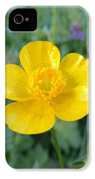 Bouton D'or IPhone 4s Case by Marc Philippe Joly
