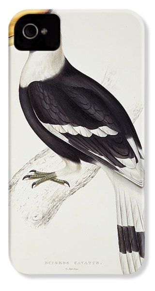 Great Hornbill IPhone 4s Case by John Gould