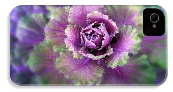 Cabbage Flower IPhone 4s Case