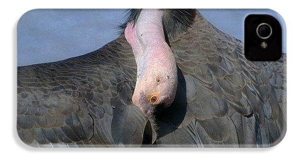 California Condor IPhone 4s Case by Fraida Gutovich