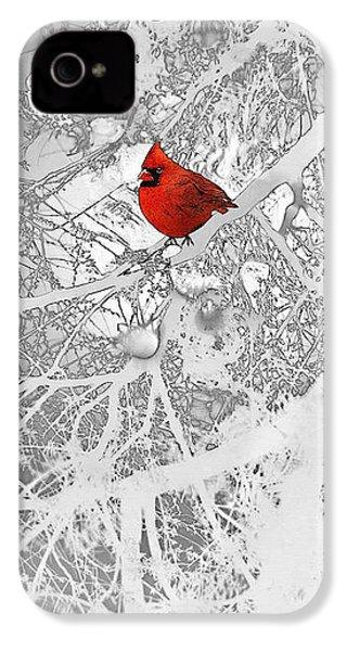 Cardinal In Winter IPhone 4s Case by Ellen Henneke