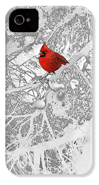 Cardinal In Winter IPhone 4s Case
