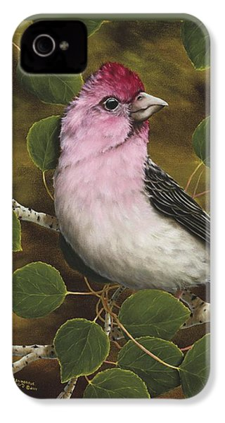 Cassins Finch IPhone 4s Case