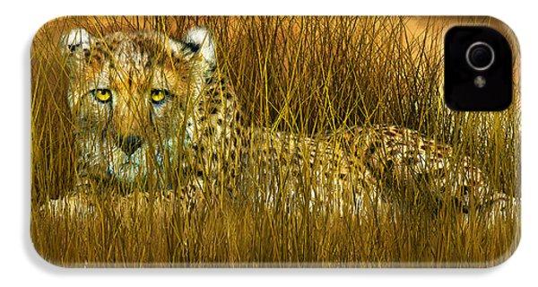 Cheetah - In The Wild Grass IPhone 4s Case by Carol Cavalaris