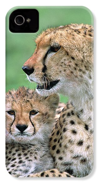 Cheetah Mother And Cub IPhone 4s Case by Yva Momatiuk John Eastcott