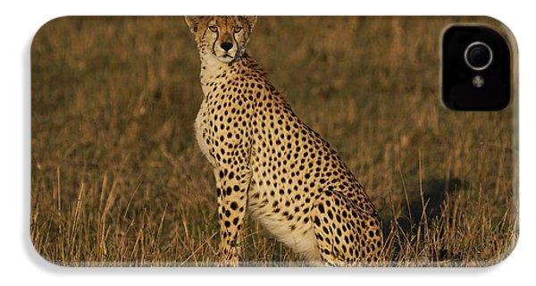 Cheetah On Savanna Masai Mara Kenya IPhone 4s Case by Hiroya Minakuchi