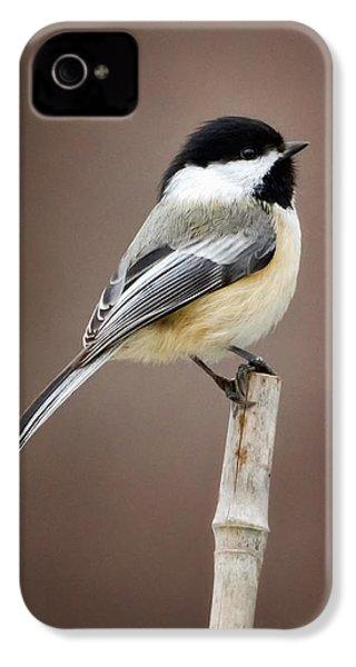 Chickadee IPhone 4s Case by Bill Wakeley