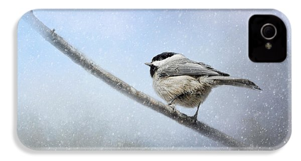 Chickadee In The Snow IPhone 4s Case by Jai Johnson