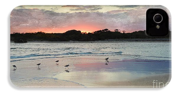 Coastal Beauty IPhone 4s Case