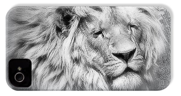 Courage IPhone 4s Case by Karen Shackles
