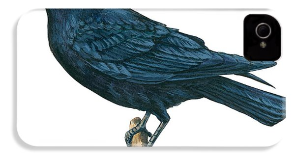Crow IPhone 4s Case by Anonymous