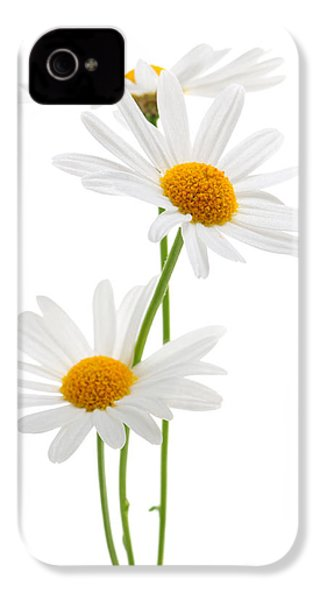 Daisies On White Background IPhone 4s Case by Elena Elisseeva
