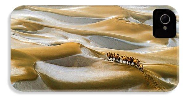 Desert Winter IPhone 4s Case