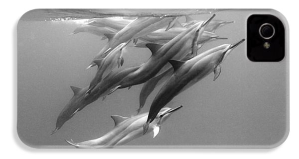 Dolphin Pod IPhone 4s Case by Sean Davey