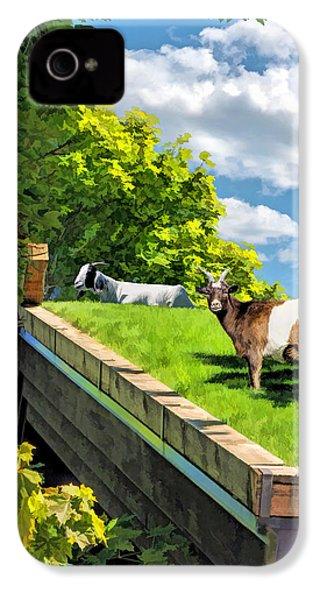 Door County Al Johnsons Swedish Restaurant Goats IPhone 4s Case by Christopher Arndt