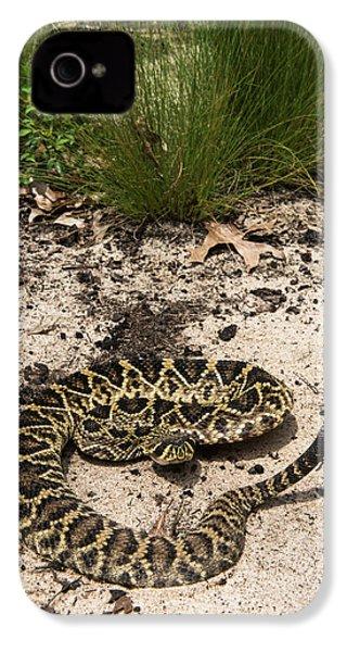 Eastern Diamondback Rattlesnake IPhone 4s Case by Pete Oxford