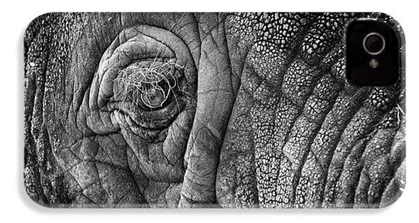 Elephant Eye IPhone 4s Case by Sebastian Musial