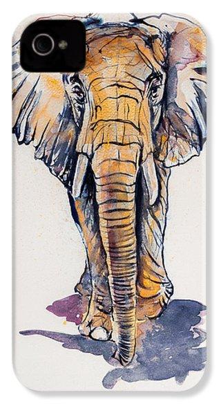 Elephant In Gold IPhone 4s Case by Kovacs Anna Brigitta