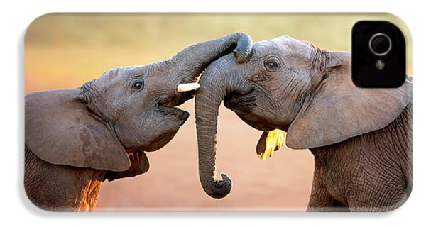 Elephants Touching Each Other IPhone 4s Case