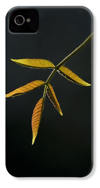 IPhone 4s Case featuring the photograph Emergence by Yulia Kazansky
