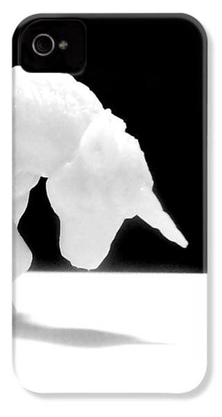 IPhone 4s Case featuring the photograph Eternelle Petite Licorne by Marc Philippe Joly