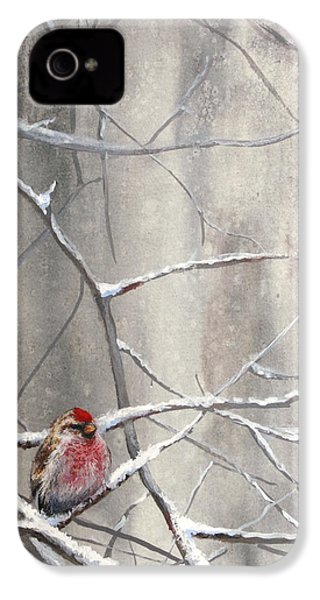 Eyeing The Feeder Alaskan Redpoll In Winter IPhone 4s Case by Karen Whitworth