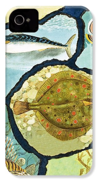 Fish IPhone 4s Case by English School