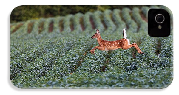 Flight Of The White-tailed Deer IPhone 4s Case by Everet Regal