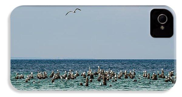 Flock Of Seagulls IPhone 4s Case