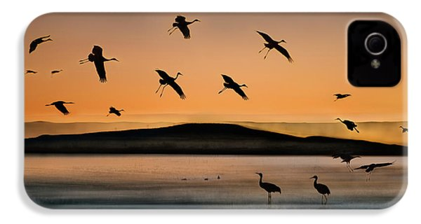 Fly-in At Sunset IPhone 4s Case