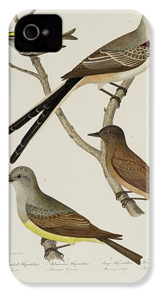 Flycatcher And Wren IPhone 4s Case by British Library