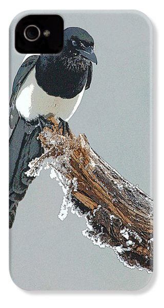 Frosted Magpie- Abstract IPhone 4s Case by Tim Grams