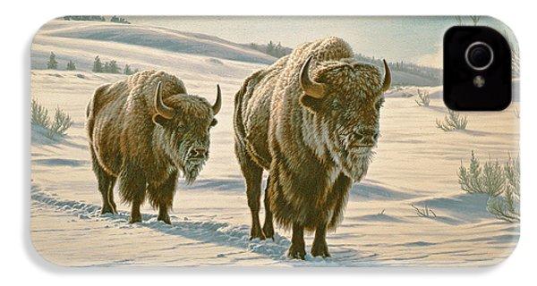 Frosty Morning - Buffalo IPhone 4s Case by Paul Krapf