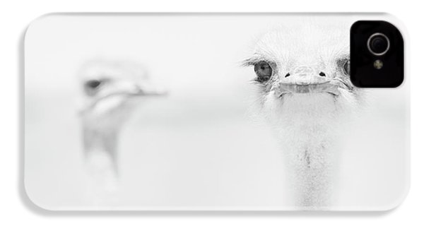 Funny Ostrich IPhone 4s Case