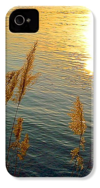Graminees Dorees IPhone 4s Case by Marc Philippe Joly