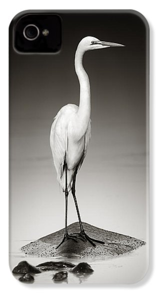 Great White Egret On Hippo IPhone 4s Case