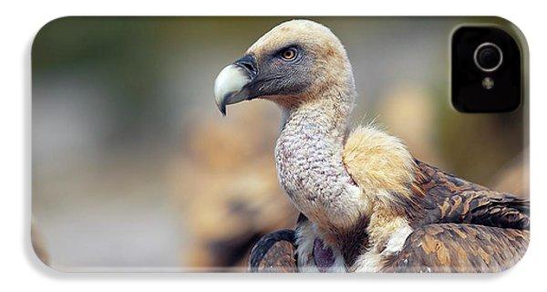 Griffon Vulture IPhone 4s Case by Nicolas Reusens