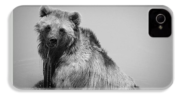 Grizzly Bear Bath Time IPhone 4s Case by Karen Shackles
