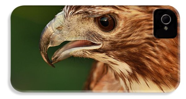 Hawk Eye IPhone 4s Case by Dan Sproul